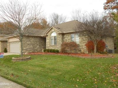 Clinton Township Single Family Home For Sale: 38885 Ridgeview