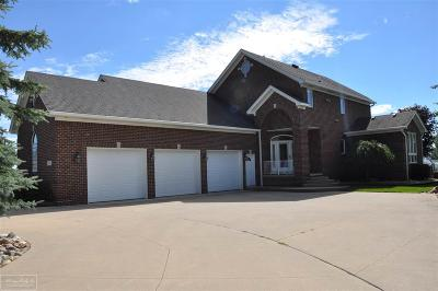 Algonac Single Family Home For Sale: 3831 Pointe Tremble