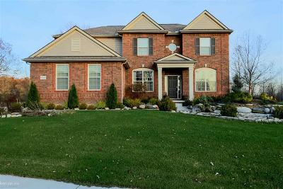 Macomb Single Family Home For Sale: 61024 Winterberry Dr