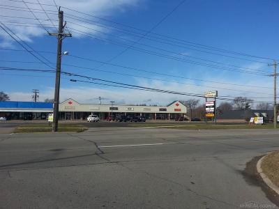 Shelby Twp Commercial Lease For Lease: 48115 Van Dyke