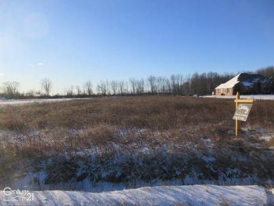 Ray, Ray Twp Residential Lots & Land For Sale: 22770 30 Mile