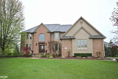 Rochester Single Family Home For Sale: 3871 White Tail Dr