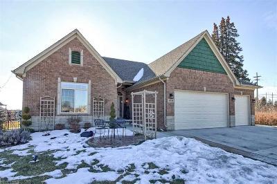 Macomb Single Family Home For Sale: 15250 Capella