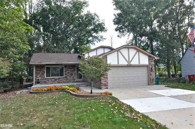 Chesterfield Single Family Home For Sale: 27221 Galassi