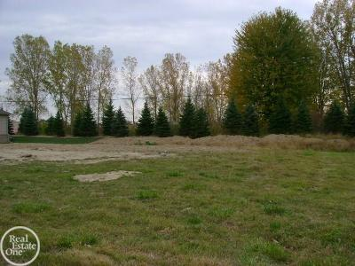 Residential Lots & Land For Sale: 32891 Birchwood Drive