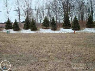 Residential Lots & Land For Sale: 32812 Birchwood Drive