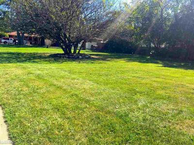 Clinton Township Residential Lots & Land For Sale: 15 Mile