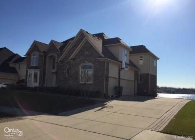 Shelby Twp Single Family Home For Sale: 4248 Forster