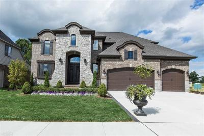 Macomb Twp Single Family Home For Sale: 21967 Anita Way East