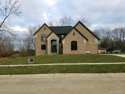 Rochester Hills Single Family Home For Sale: 1971 Rosati