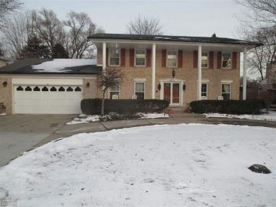Clinton Township Single Family Home For Sale: 38434 Santa Anna