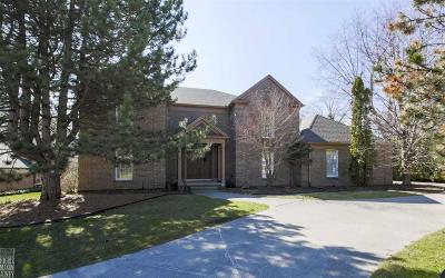 Grosse Pointe Single Family Home For Sale: 9 Dodge Place