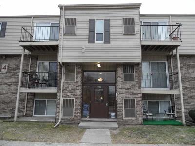Clinton Township Condo/Townhouse For Sale: 17124 Clinton River Rd. Apt 9c