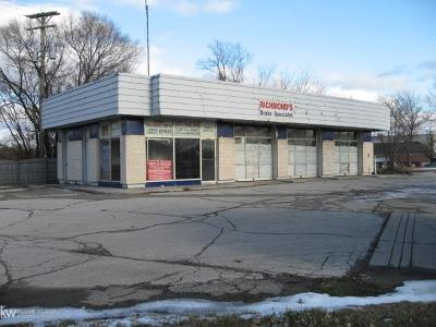 Richmond Commercial/Industrial For Sale: 66942 Gratiot