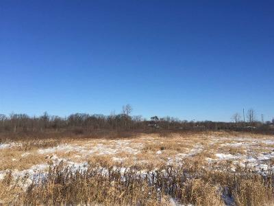 Residential Lots & Land For Sale: 6454 Swan Creek