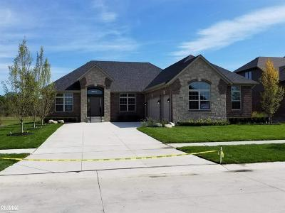 Macomb Single Family Home For Sale: 54662 Deadwood