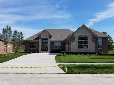 Macomb Single Family Home For Sale: 54854 Deadwood