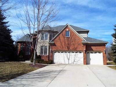 Macomb Single Family Home For Sale: 13265 Windham Dr