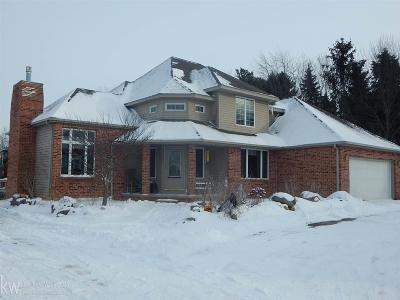 St. Clair Single Family Home For Sale: 3162 Breen Rd