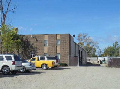 Harrison Twp Commercial/Industrial For Sale: 42469 Irwin