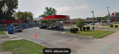 Harrison Twp Commercial/Industrial For Sale: 35526 Jefferson