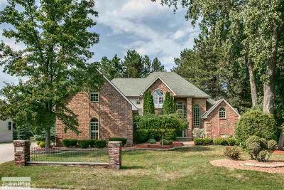 St. Clair Single Family Home For Sale: 2850 Shorewood
