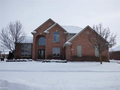 Macomb Single Family Home For Sale: 21450 Bunker Dr