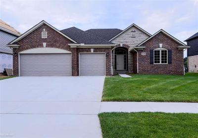 Macomb Single Family Home For Sale: 21836 Rio Grande