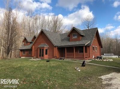 Algonac Single Family Home For Sale: 6880 Holland