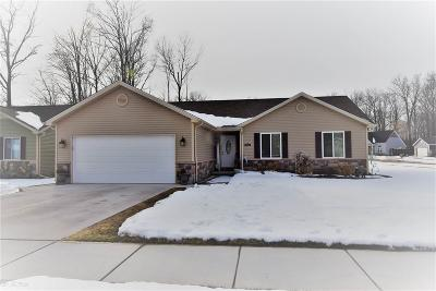 Algonac Single Family Home For Sale: 9536 Amy