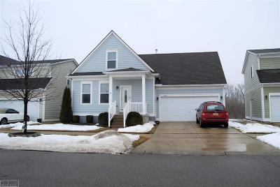 New Haven Single Family Home For Sale: 59244 E Brockton Street