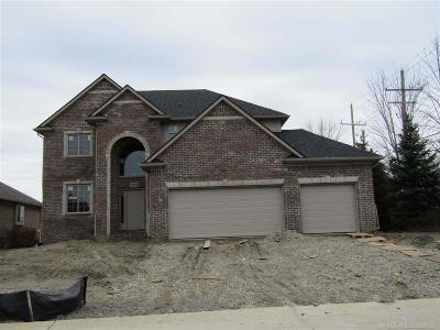 Macomb MI Single Family Home For Sale: $429,900