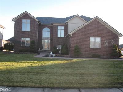 Macomb Single Family Home For Sale: 20012 Chesterbrook