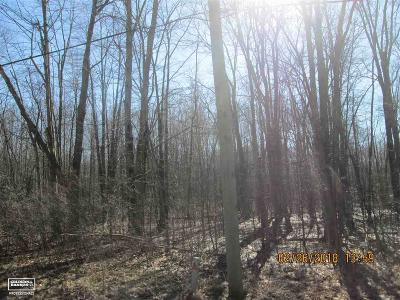 Casco Residential Lots & Land For Sale: Lindsey