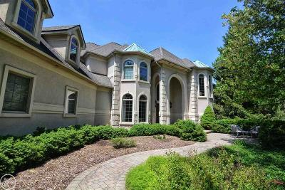 Macomb Single Family Home For Sale: 70901 Carnegie Lane