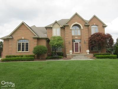 Shelby Twp Single Family Home For Sale: 54853 Whitby Way