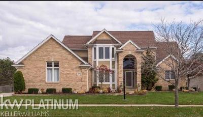 Shelby Twp Single Family Home For Sale: 49702 Sandra Drive