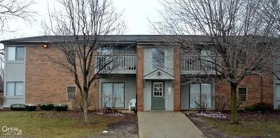 Clinton Township Condo/Townhouse For Sale: 35411 Hickory Woods