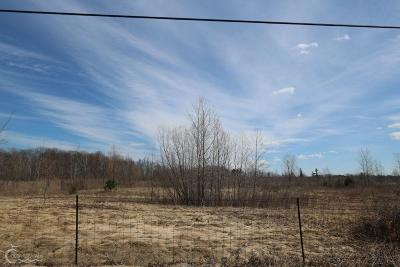 Residential Lots & Land For Sale: Lot 080 Bauman