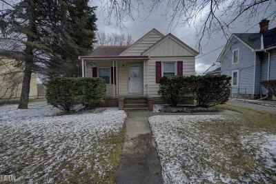 Macomb Single Family Home For Sale: 49100 Romeo Plank