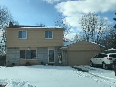 Sterling Heights Single Family Home For Sale: 39611 Academy