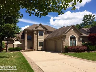 Washington Twp Single Family Home For Sale: 57536 Ridgewood Dr