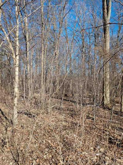 Shelby Twp Residential Lots & Land For Sale: 8480 Rosecrest