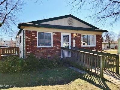 Clinton Township Single Family Home For Sale: 19888 Broadacres