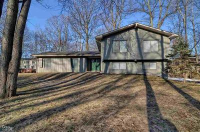 Rochester Hills Single Family Home For Sale: 3630 Old Creek