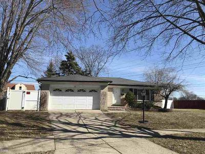 Macomb Single Family Home For Sale: 12461 Rosselo