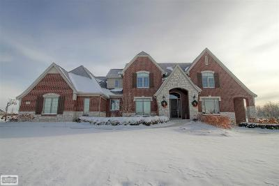 Washington Twp MI Single Family Home For Sale: $859,900