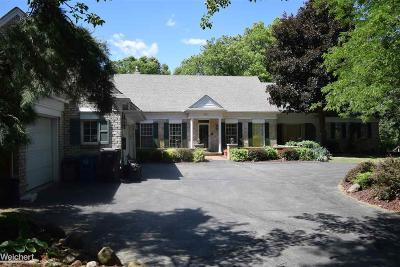 Lake Orion Single Family Home For Sale: 241 Menasha Trl
