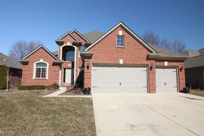 Macomb Single Family Home For Sale: 18293 Tarpey