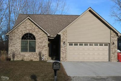 Harrison Twp Single Family Home For Sale: 39490 Macomber St